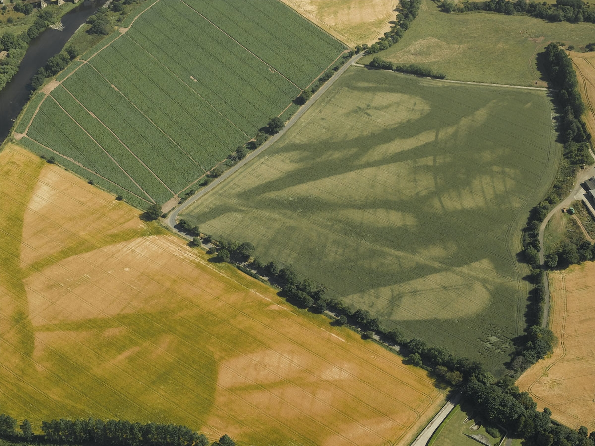 Medieval/Post-medieval Ridge and Furrow - Cropmark page