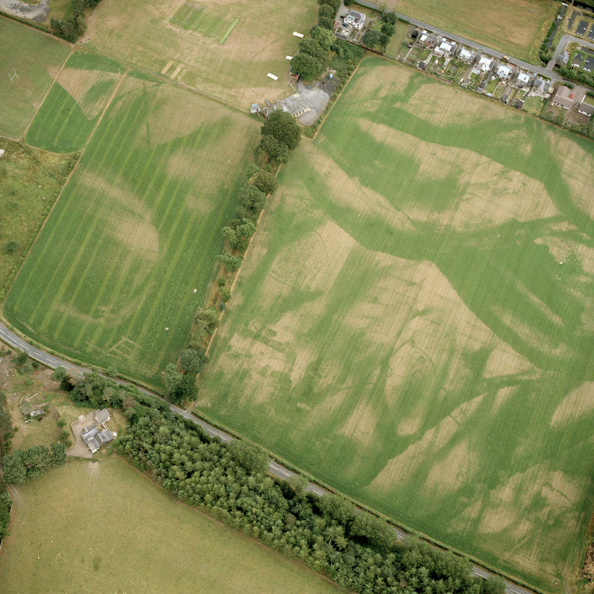 Medieval Settlement - Cropmark page