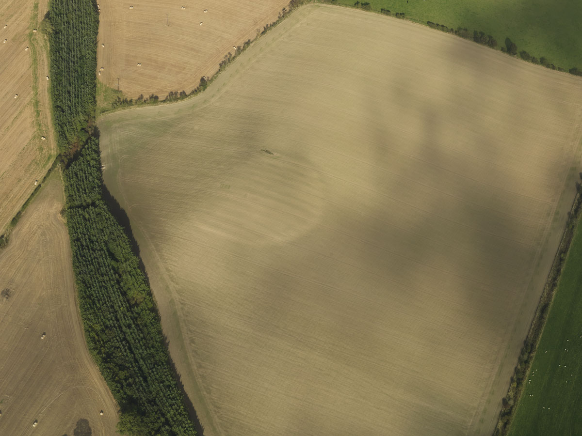 Plantation Enclosure - Cropmark page